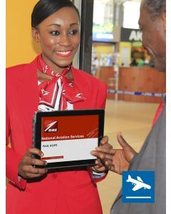 Meet and Assist - Arrival at Maputo International Airport [POS]